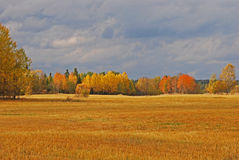 Autumn landscape in Sweden Stock Photography