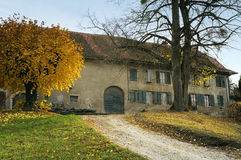 Autumn landscape in Swiss Stock Images