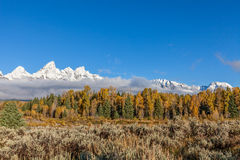 Autumn Landscape in Tetons Royalty-vrije Stock Foto