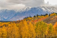 Autumn Landscape in the Tetons of Wyoming. A scenic landscape of the tetons in autumn Royalty Free Stock Image