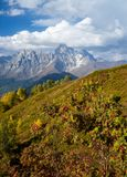 Autumn in the mountains of Svaneti and peak Ushba, Georgia Royalty Free Stock Photography
