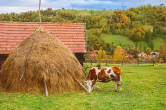 Autumn landscape in Transylvania Stock Photo