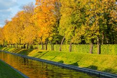 Autumn landscape - golden autumn trees along the city channel in the sunny autumn evening Royalty Free Stock Images