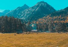 Autumn landscape, trees on the background of mountains, mountains, nature stock images