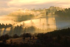 Autumn landscape. With trees and fog Royalty Free Stock Photography