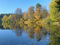 Autumn landscape with trees reflecting in a lake Royalty Free Stock Images