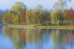 Autumn landscape with trees reflection on lake Stock Photos
