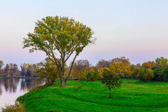 Autumn Landscape with Trees and River in the City Park at Sunset Royalty Free Stock Photo
