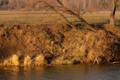 river in autumn stock photography