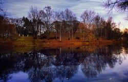 Autumn landscape trees river park Stock Photography