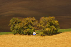 Autumn landscape with trees and waved fields. Royalty Free Stock Photo