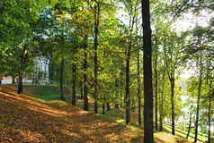 Autumn landscape in Tsaritsyno Park. Early autumn, Sunny day Royalty Free Stock Photography
