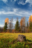 Autumn landscape in Ural mountains Royalty Free Stock Photos