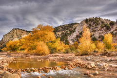 Autumn landscape, Utah. Autumn colours on trees by creek, and their reflections in pool made by small dam, creates a picturesque scene, Dixie National Forest Royalty Free Stock Photo