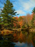 Autumn landscape V. Autumn landscape in Canada royalty free stock photos