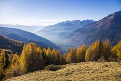Autumn landscape in Valtellina in Italy. View of the valley of Tirano and Sondrio in Valtellina, Italy Stock Photo