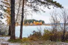 Autumn landscape with a view of the island. Siberia, river Ob Stock Image