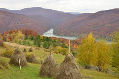 Autumn landscape view with lake