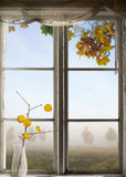 Autumn landscape viewed through window Royalty Free Stock Images