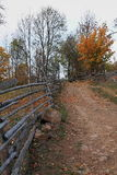Autumn landscape with walkway Royalty Free Stock Images