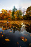 Autumn landscape from water Royalty Free Stock Photography