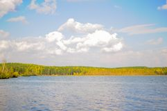 Summer panoramic landscape with mixed forest Stock Image