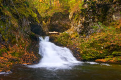 Autumn landscape with a waterfall on the creek taiga. Stock Photos
