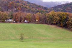 Autumn landscape in West Virginia. WV Nature's Autumn Colors, with green field and red leaves Stock Photography