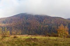 Autumn landscape in the Carpathians Stock Image
