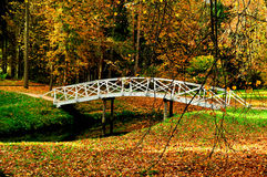 Free Autumn Landscape - White Wooden Bridge In The Autumn Park Among The Golden Autumn Trees And Fallen Autumn Leaves Stock Photo - 78396660