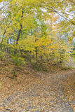 Autumn landscape at Wilket Creek Park in Toronto Royalty Free Stock Photo