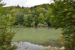 Autumn landscape and willow trees at lake Vida near Luncasprie village Stock Photo