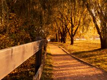 Free Autumn Landscape With Evening Sunbeams, Shadows From Trees On The Path And An Old Wooden Fence Royalty Free Stock Image - 193495706