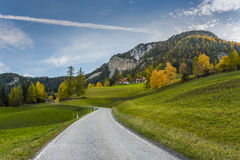 Autumn Landscape With Road Royalty Free Stock Images