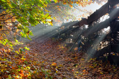 Autumn landscape with wooden fence Royalty Free Stock Image