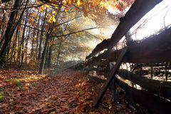 Autumn landscape with wooden fence Royalty Free Stock Photography