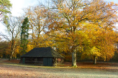 Autumn landscape. Wooden shed in a beautiful autumn colored landscape Royalty Free Stock Images