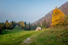 Autumn in the woods. Autumn landscape in the woods royalty free stock photos