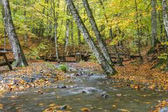 Yedigoller National Park. Beautiful, bolu. royalty free stock photo
