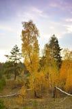 Autumn landscape. Royalty Free Stock Photography