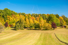 Autumn landscape with yellow and red trees and blue sky Stock Photos