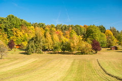 Autumn landscape with yellow and red trees ver blue sky. Country Royalty Free Stock Photography