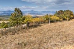 Autumn Landscape with yellow trees of Cherna Gora mountain,  Bulgaria Royalty Free Stock Image