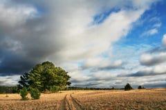 Autumn landscapes. Autumn season for rural landscapes Stock Photos