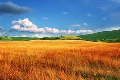 Autumn landscapes. View of rural Autumn landscape Stock Photos