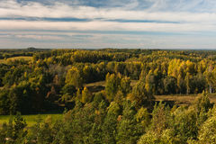 Autumn in landscapes. Autumn in karula natural reeserve Stock Photography