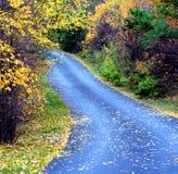 Autumn Lane Stock Images