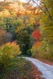 Autumn lane Stock Photo
