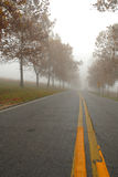 Autumn Lanes Royalty Free Stock Images