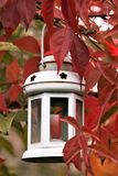 Autumn. Lantern hanging on a tree in the garden royalty free stock photos